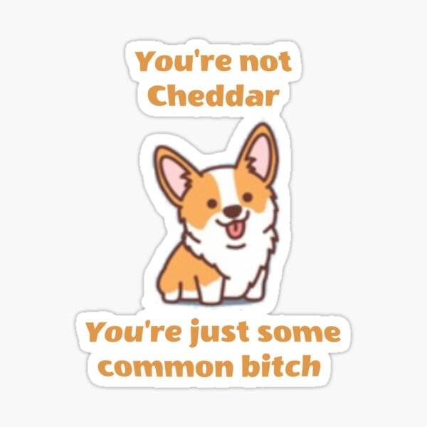 You're not Cheddar, You're just some common bitch Sticker