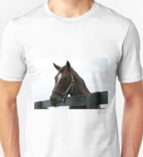 Sunshine Forever RIP - Old Friend's Equine  T-Shirt