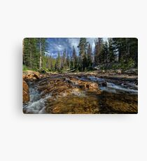Utah Nature Photography - Provo River Canvas Print