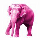 Don't think of a Pink Elephant by Deanna Roberts Think in Pictures