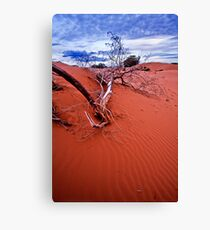desert struggle Canvas Print