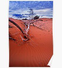 desert struggle Poster
