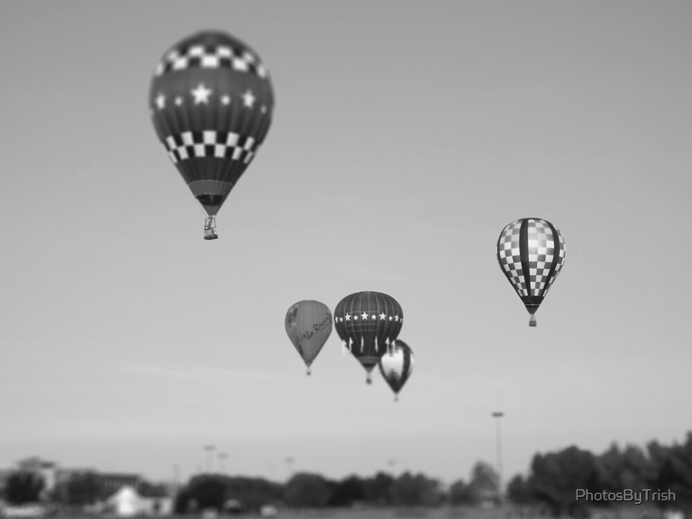Hot Air Balloons, Black and White Tilt Shift by PhotosByTrish