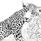 Leopardenlinie Arbeit von Vicky Pratt