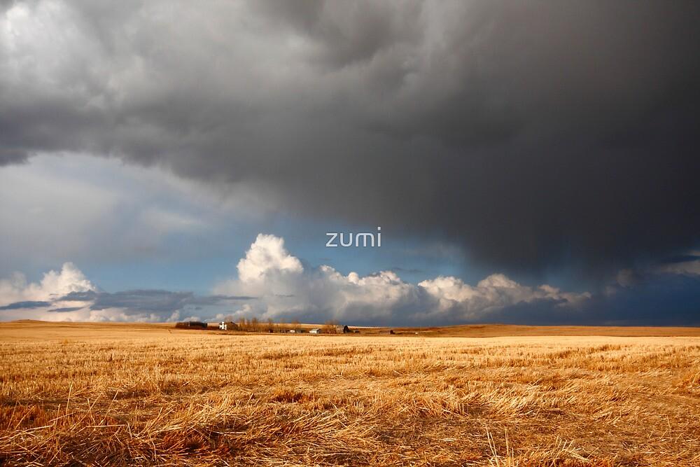 Stormy prairies II by zumi