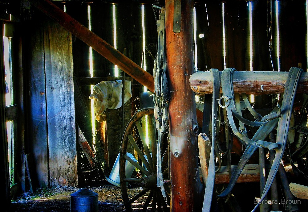 In the Old Barn by Barbara  Brown