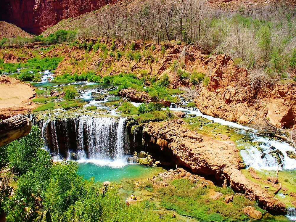 Oasis in Havasupai by BearHallDesigns