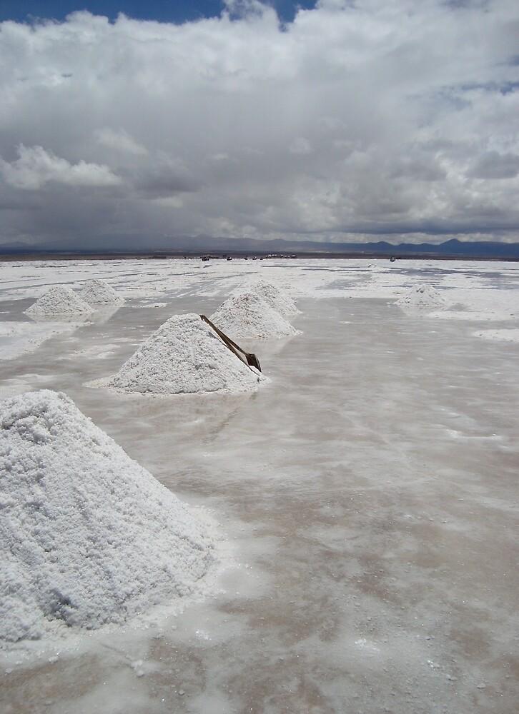 salt lake by chikismix