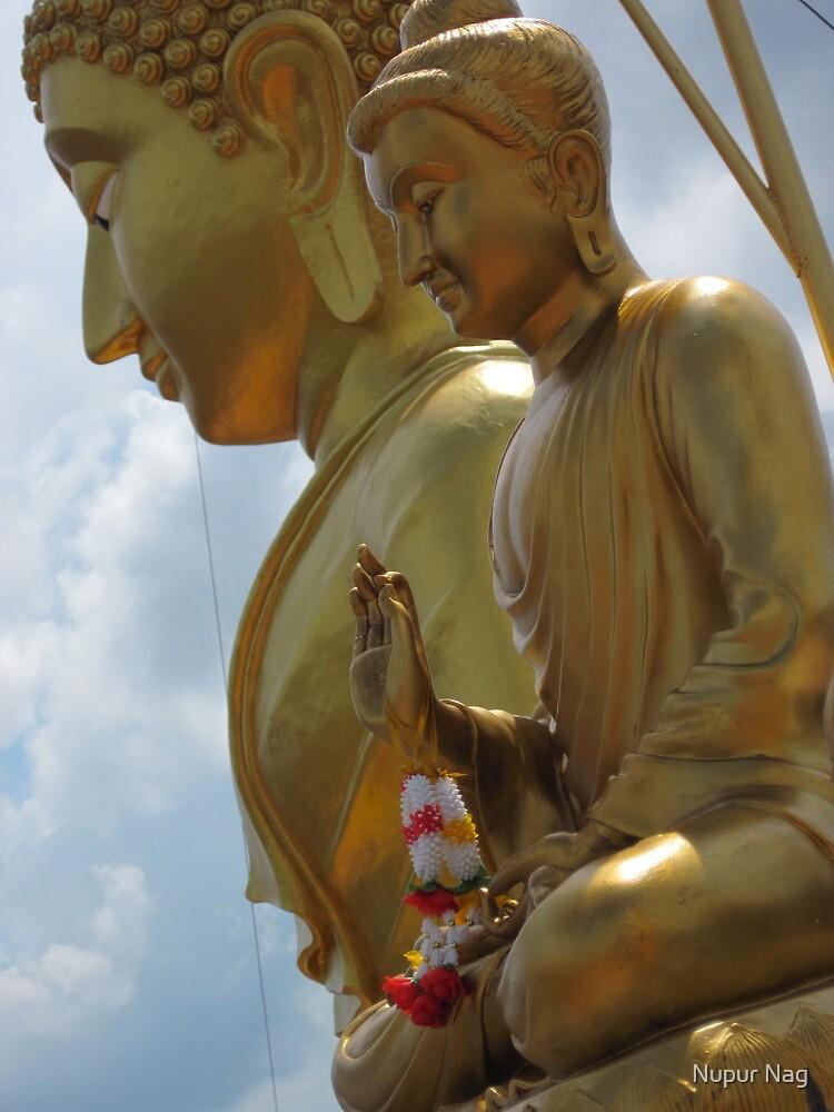 1000 steps to Buddha by Nupur Nag