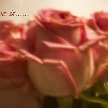 Love Is....... by SandraCockayne