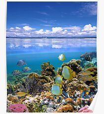 Sky and underwater sea Poster
