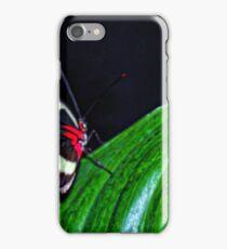 Beauty Flys iPhone Case/Skin