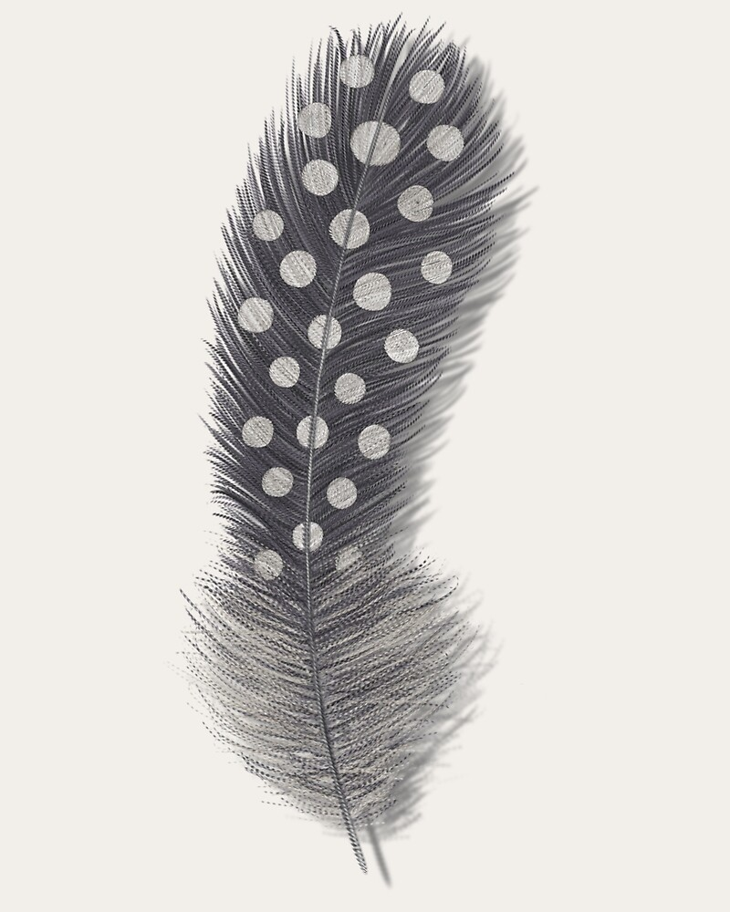 Guinea feather by Sunflow