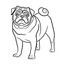 Pug Line Drawing by Adam Regester