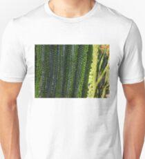 Strange Plantlife - Cactus Garden Barcelona T-Shirt