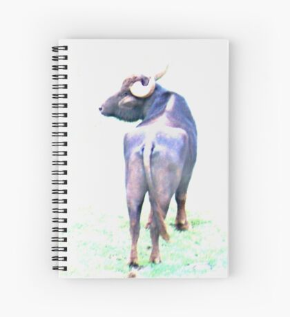 Water buffalo in high key Spiral Notebook