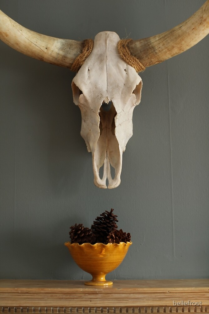 Skull and Pine Cones by bellefrost