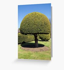 Topiary tree Greeting Card