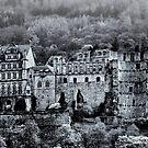 Heidelberg Castle by Sue Frank