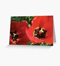 Move Over Roses – Its a New Day! Greeting Card