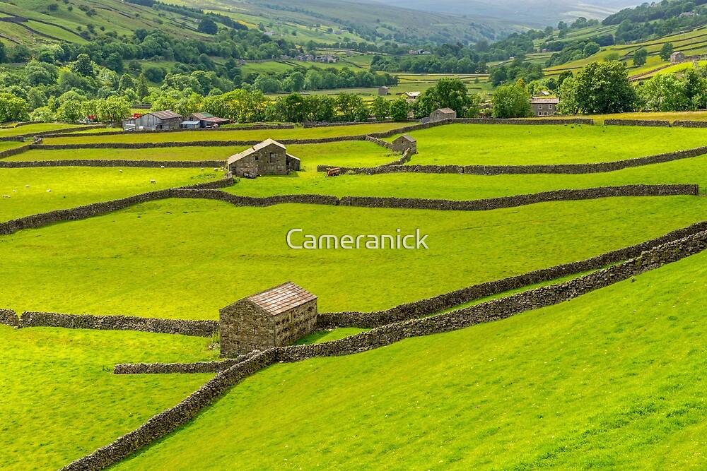 Gunnerside Landscape Swaledale by Nick Jenkins