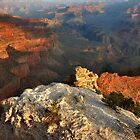 Grand Canyon At Sunrise by Stephen Vecchiotti
