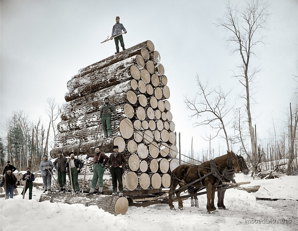 Logging, UP Michigan - 1890's by imbuedwithhues