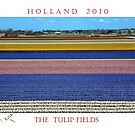 A Postcard From Holland   (See Large)  by John44