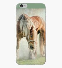 Gypsy in the morning mist iPhone Case