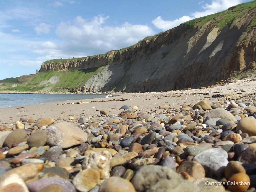 Cayton Bay - cliffs by Vanessa Galashan
