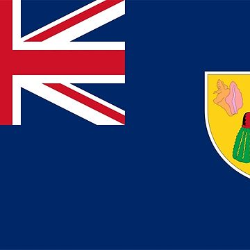 Turks and Caicos Islands Flag by sweetsixty