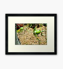 METAL WHIMSY IN THE FLOWER BED Framed Print
