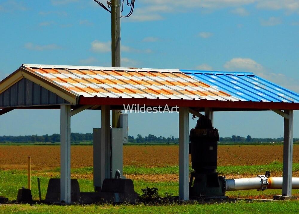 American Farming by WildestArt