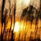 Scorched Earth by heidiannemorris
