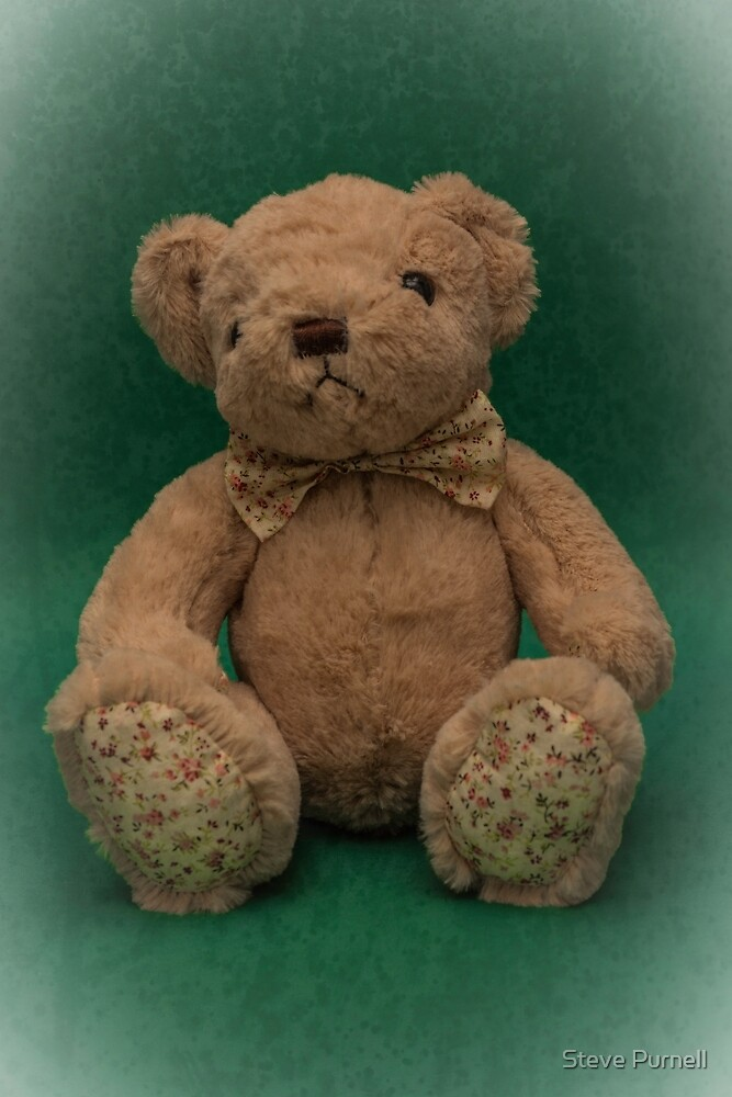 Teddy Green by Steve Purnell