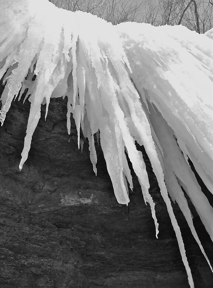 bw ice by pinetreegoods