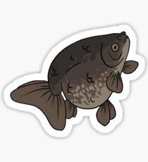 Fancy Goldfish - Ranchu II Sticker
