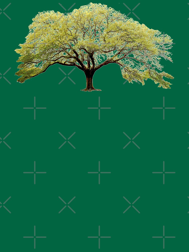 Oak Tree by thedrumstick
