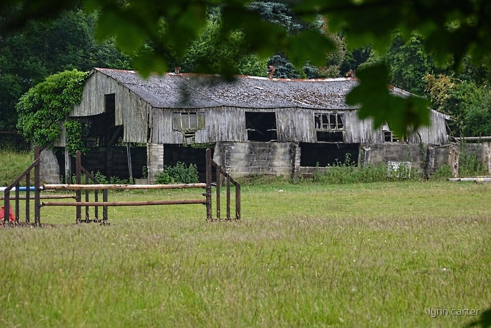 Dilapidated Barn. Dorset UK by lynn carter