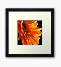 Orange Explosion Framed Print
