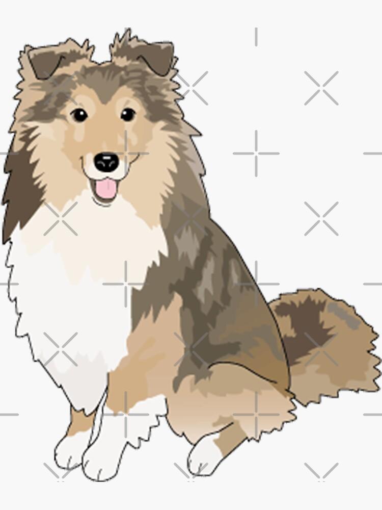 Sheltie Dog by Pam069