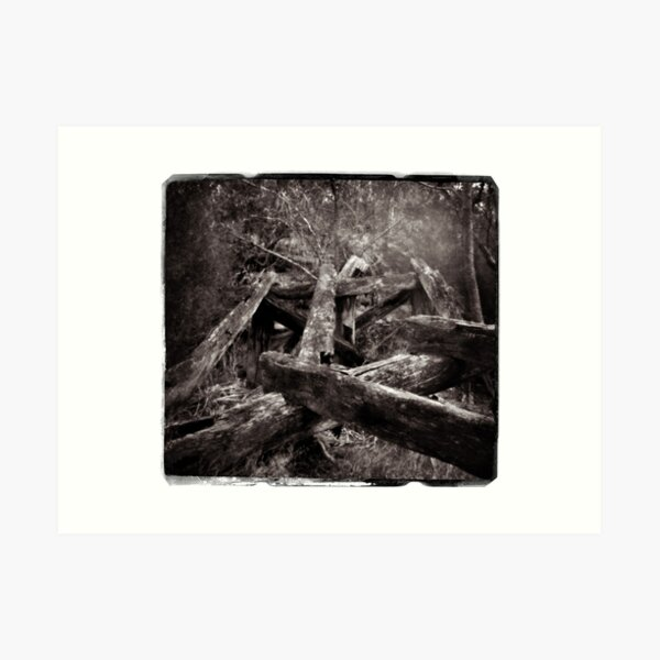 Remnants of the Past_Pinhole Photography Art Print