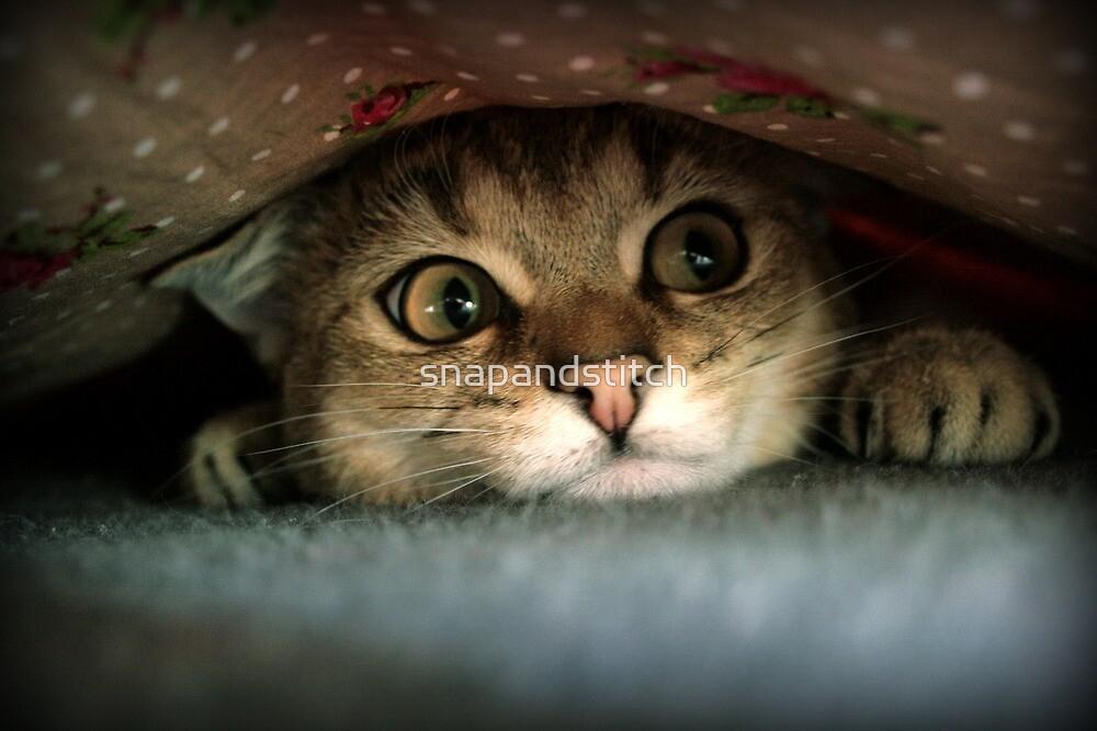 Sweet Cat Nude Photos 61