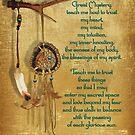 Lakota Gebet Dream Catcher von Irisangel