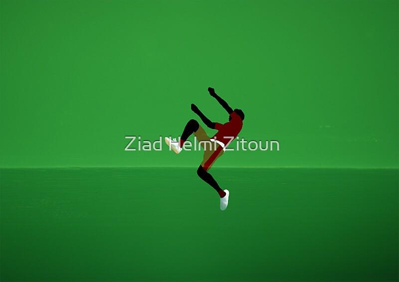 Freedom - Tunisia - Ziad Zitoun - 40x30cm - 2009 by Ziad Helmi Zitoun