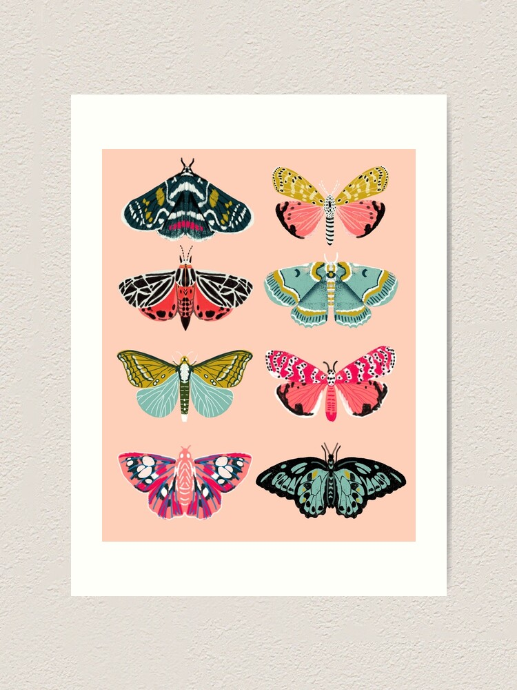 Alternate view of Lepidoptery No. 1 by Andrea Lauren  Art Print