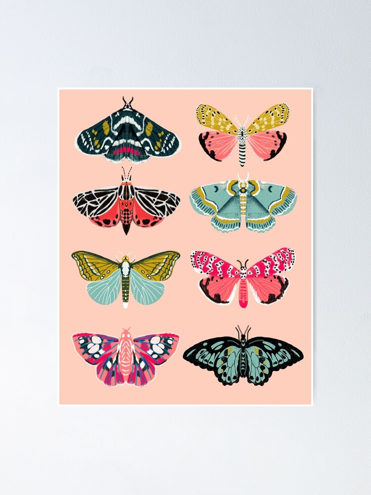 Alternate view of Lepidoptery No. 1 by Andrea Lauren  Poster