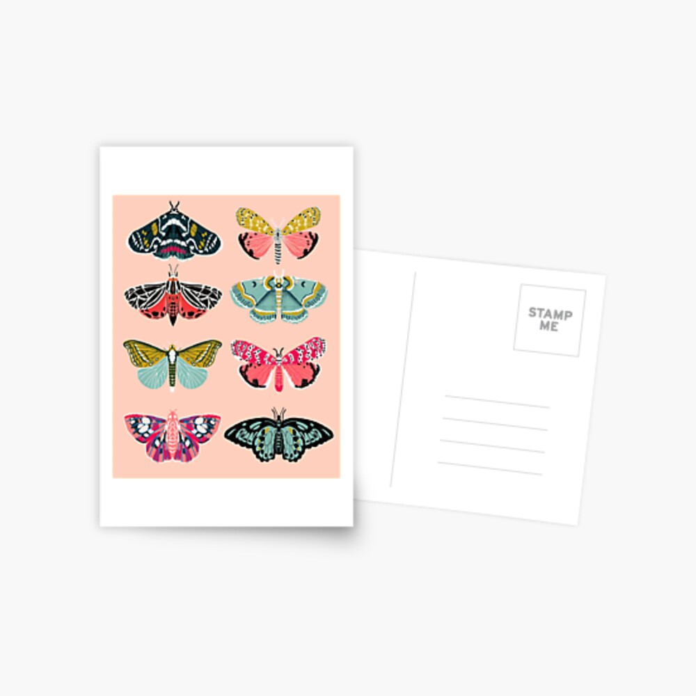 Lepidoptery No. 1 by Andrea Lauren  Postcard