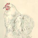 Pekin hen by Maree Clarkson