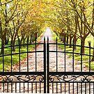 Autumn by Brett Keith